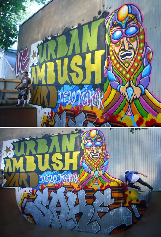 Skate Murals 2010